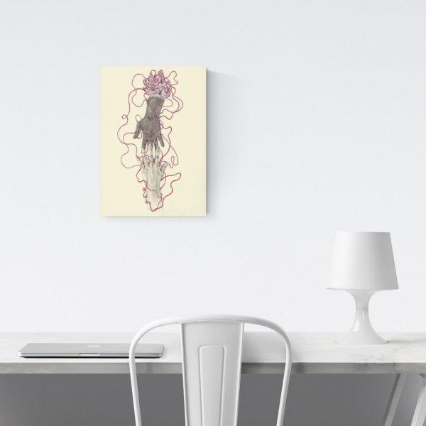 Ilustraciones de Elisa Ancori