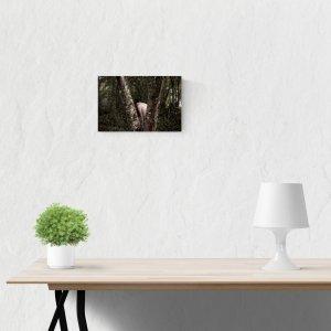 venta de fotografías